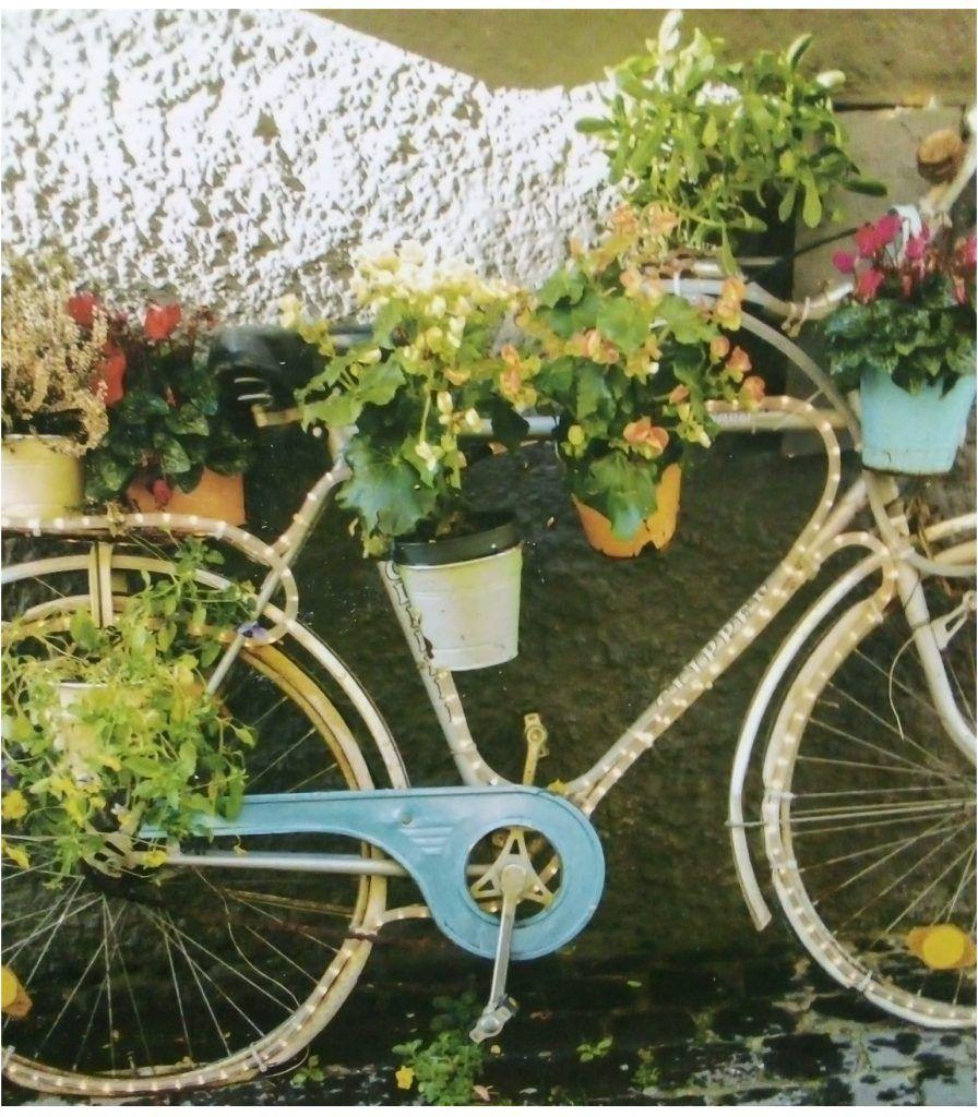 Bicicleta con flores en el furancho de la pigarreira